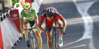 Peter Sagan, Greg Van Avermaet