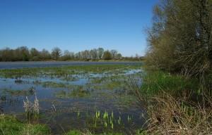 Dojezd 14. etapy Tour de France - Dombes - kraj rybníků