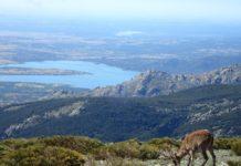 Morcuera - Navacerrada - krajina 18. etapy Vuelty 2019